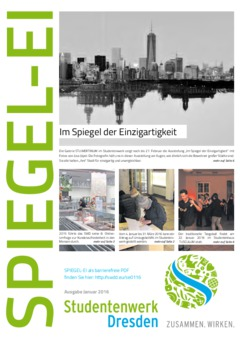 SPIEGEL-EI Cover 1/2016