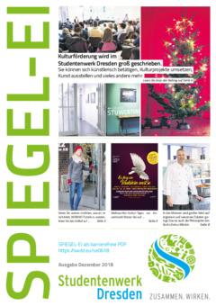 SPIEGEL-EI Cover 6/2018