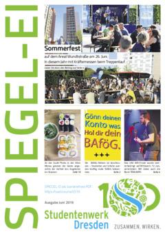 SPIEGEL-EI Cover 3/2019